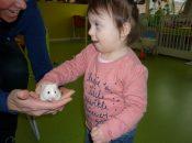 Witje onze hamster!